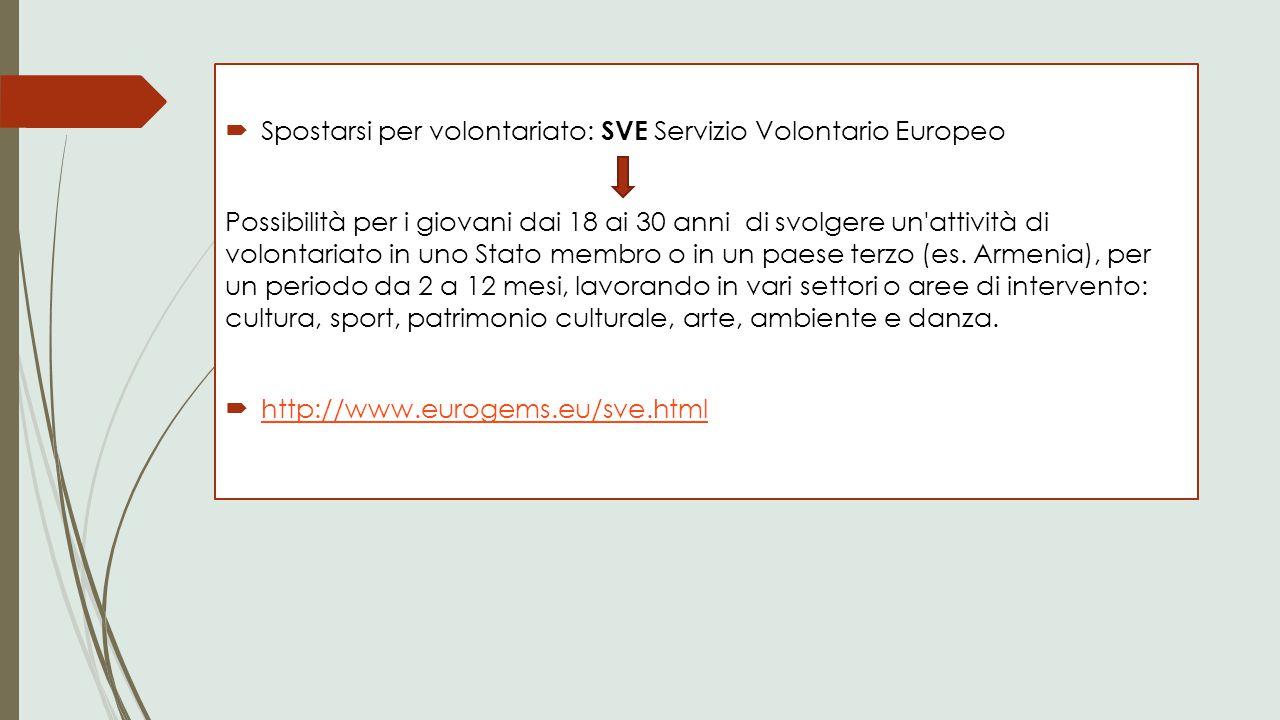 Spostarsi per volontariato: SVE Servizio Volontario Europeo