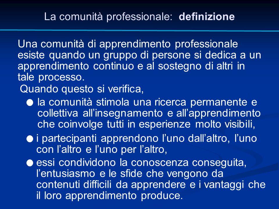 La comunità professionale: definizione