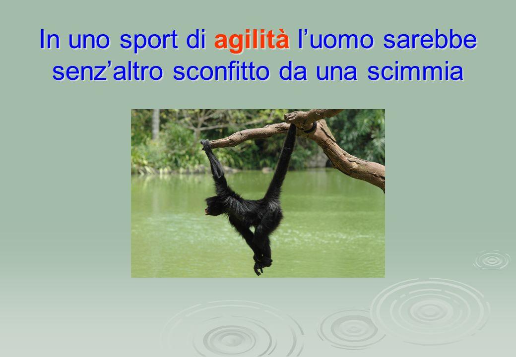 In uno sport di agilità l'uomo sarebbe