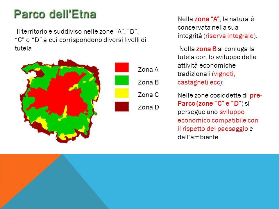 Nella zona A , la natura è conservata nella sua integrità (riserva integrale).