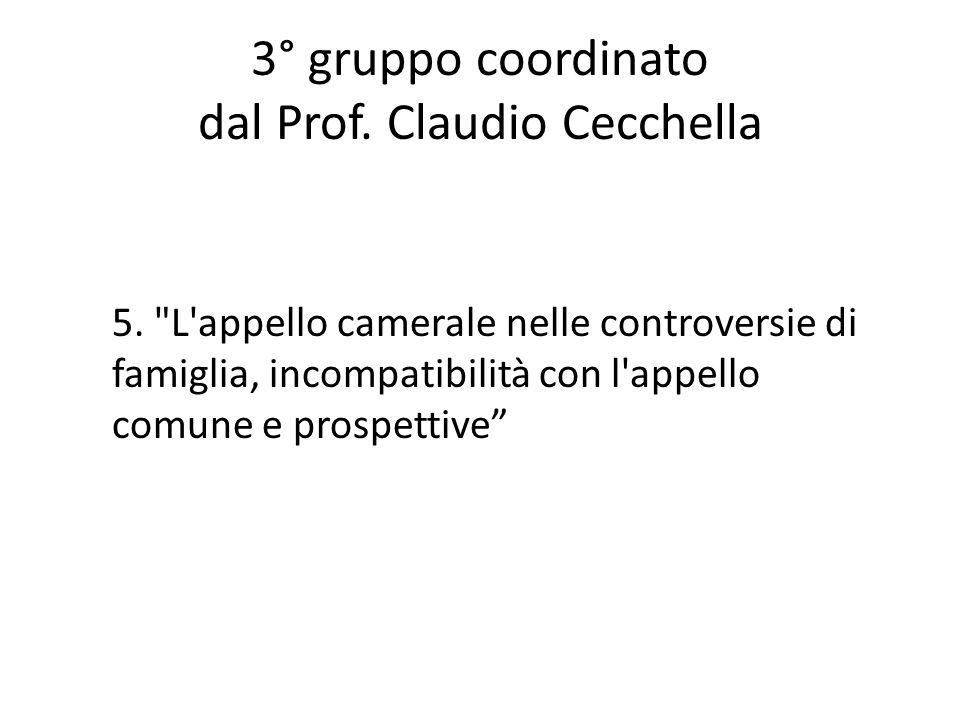 3° gruppo coordinato dal Prof. Claudio Cecchella
