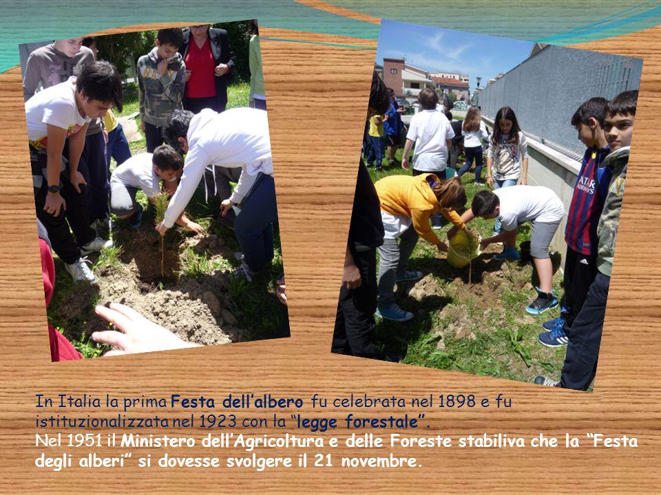 In Italia la prima Festa dell'albero fu celebrata nel 1898 e fu istituzionalizzata nel 1923 con la legge forestale .