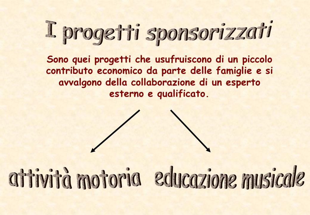 I progetti sponsorizzati