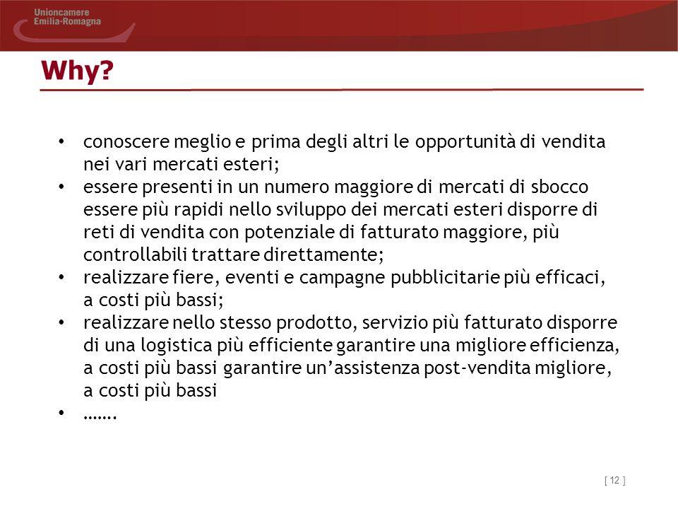 Why conoscere meglio e prima degli altri le opportunità di vendita nei vari mercati esteri;