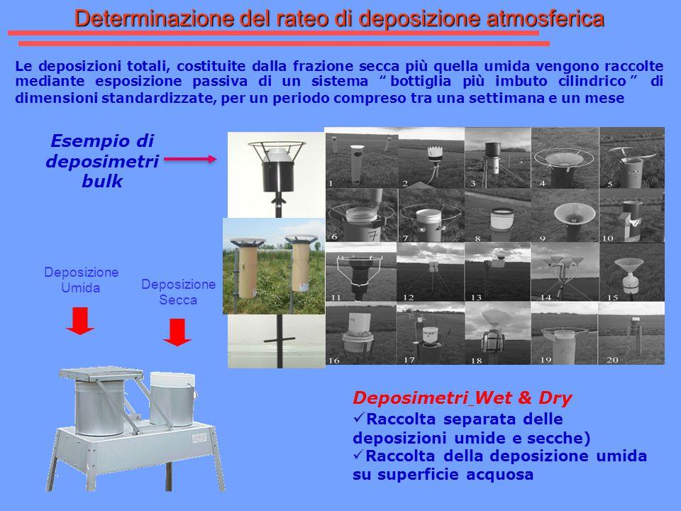 Esempio di deposimetri bulk