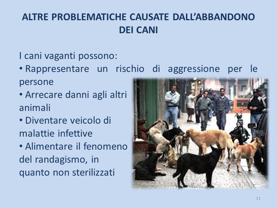 ALTRE PROBLEMATICHE CAUSATE DALL'ABBANDONO DEI CANI