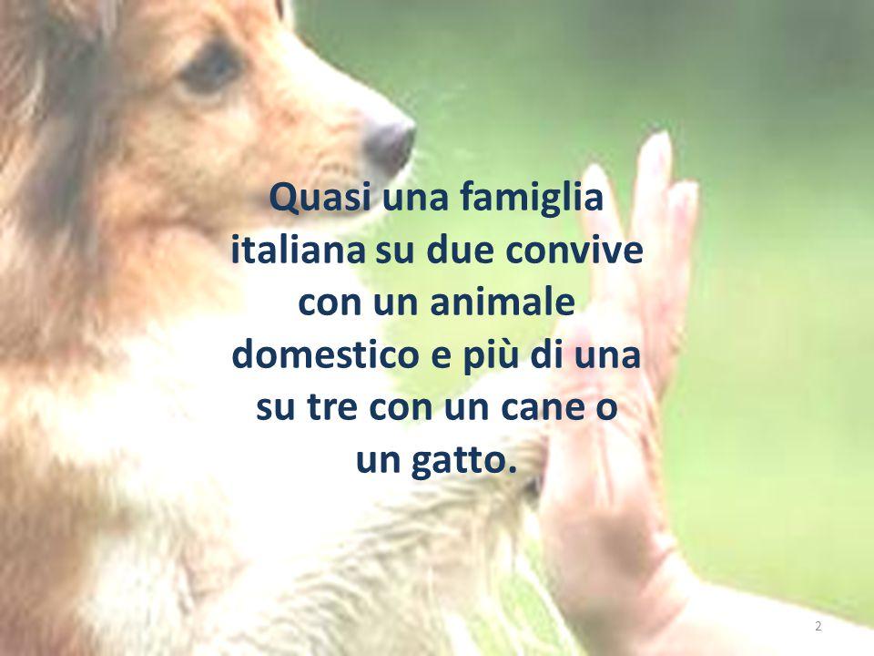 Quasi una famiglia italiana su due convive con un animale domestico e più di una su tre con un cane o un gatto.