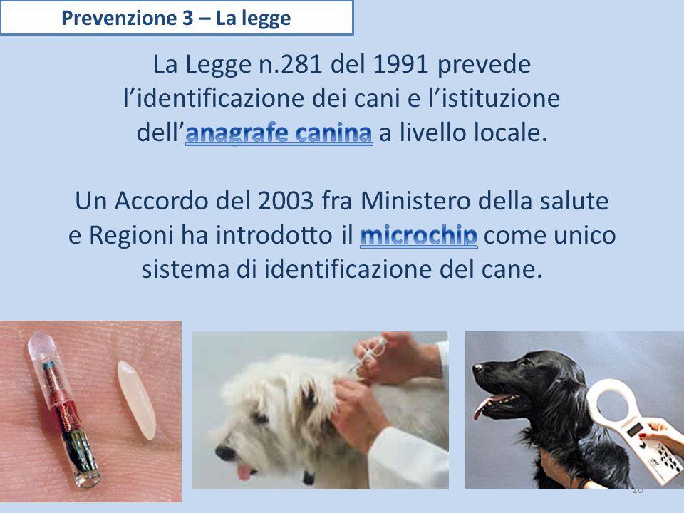 Prevenzione 3 – La legge La Legge n.281 del 1991 prevede l'identificazione dei cani e l'istituzione dell'anagrafe canina a livello locale.