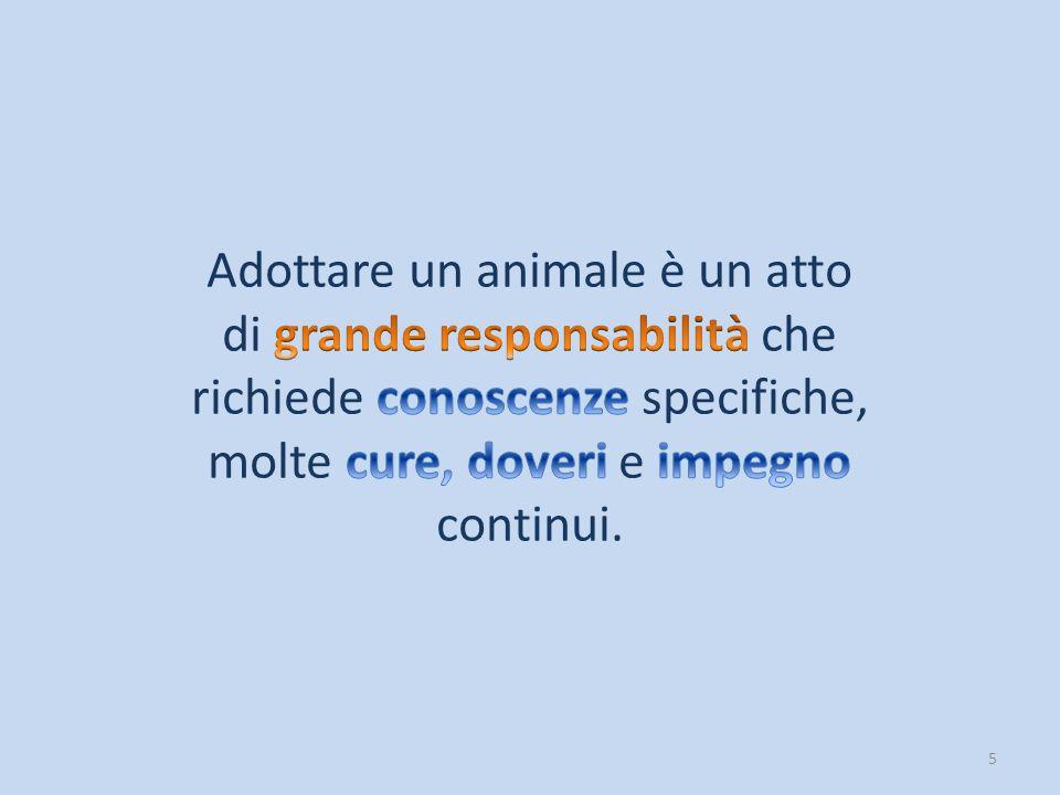 Adottare un animale è un atto di grande responsabilità che richiede conoscenze specifiche, molte cure, doveri e impegno continui.