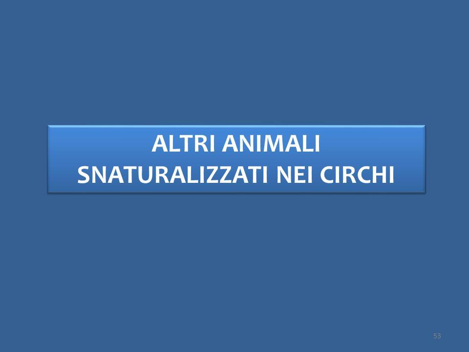 ALTRI ANIMALI SNATURALIZZATI NEI CIRCHI