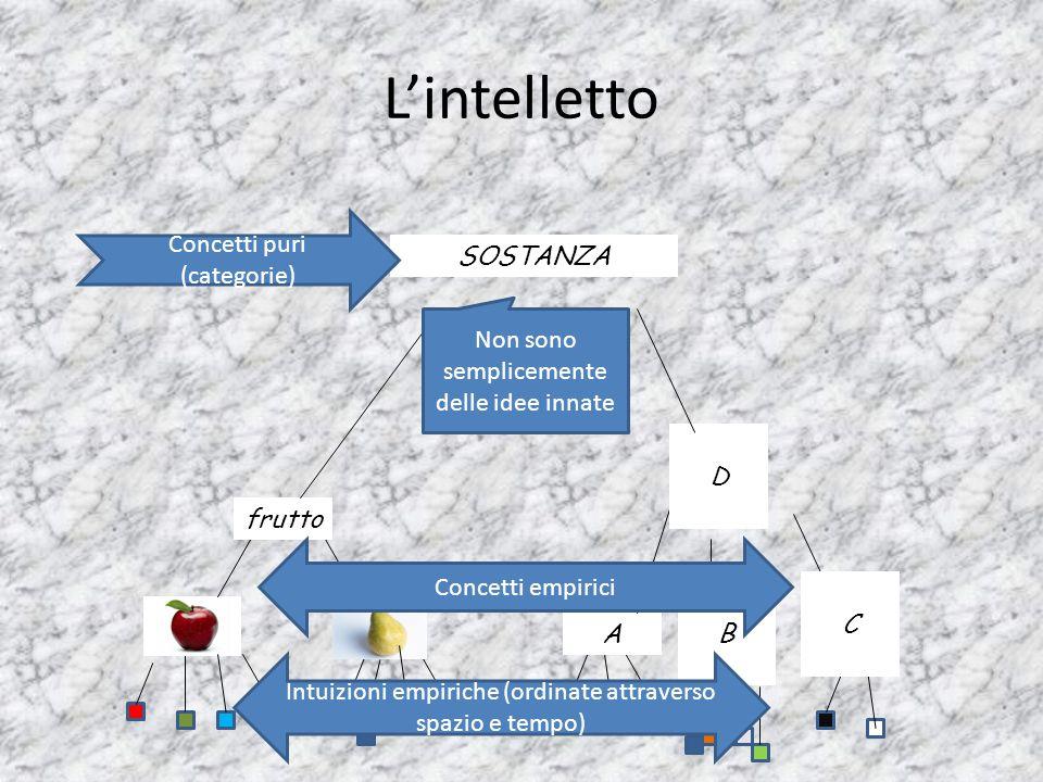 L'intelletto Concetti puri (categorie) SOSTANZA