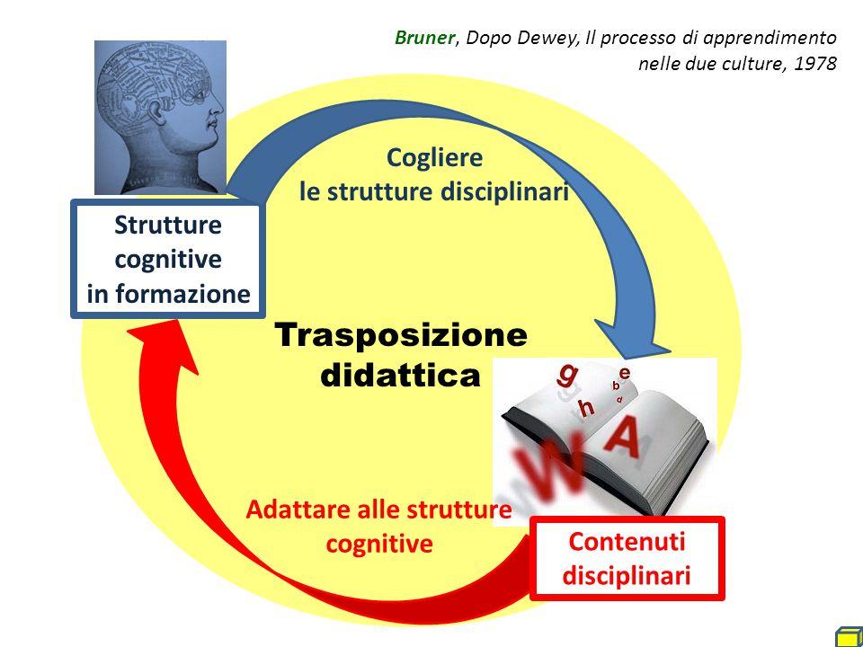 Cogliere le strutture disciplinari