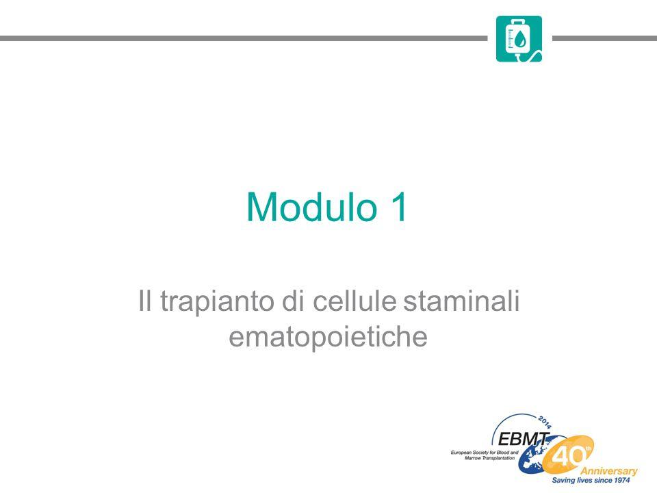 Il trapianto di cellule staminali ematopoietiche