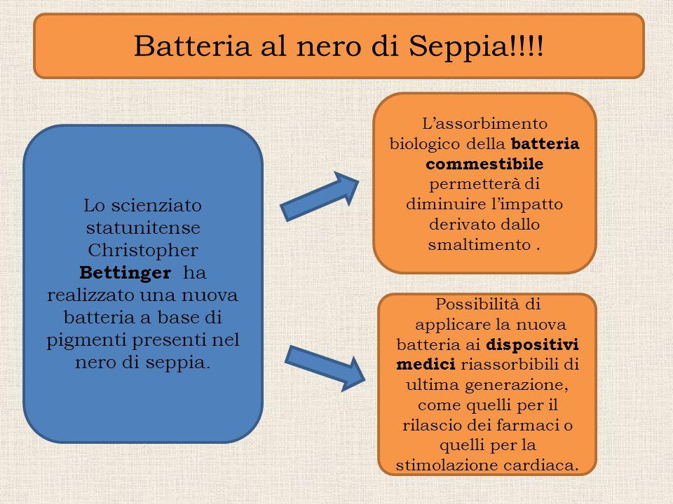 Batteria al nero di Seppia!!!!