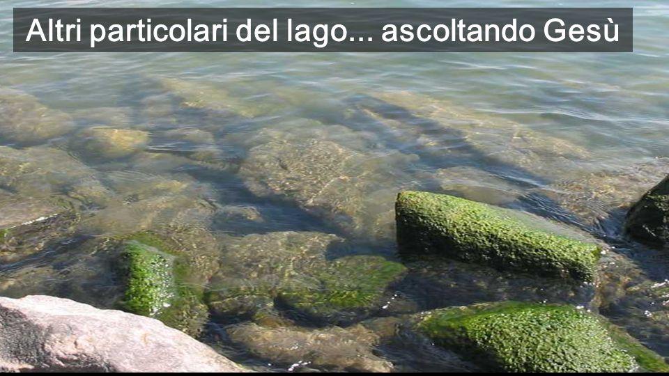Altri particolari del lago... ascoltando Gesù