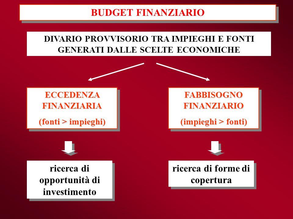BUDGET FINANZIARIO ricerca di opportunità di investimento