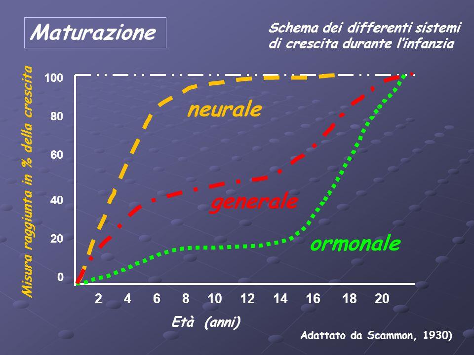 Maturazione neurale generale ormonale