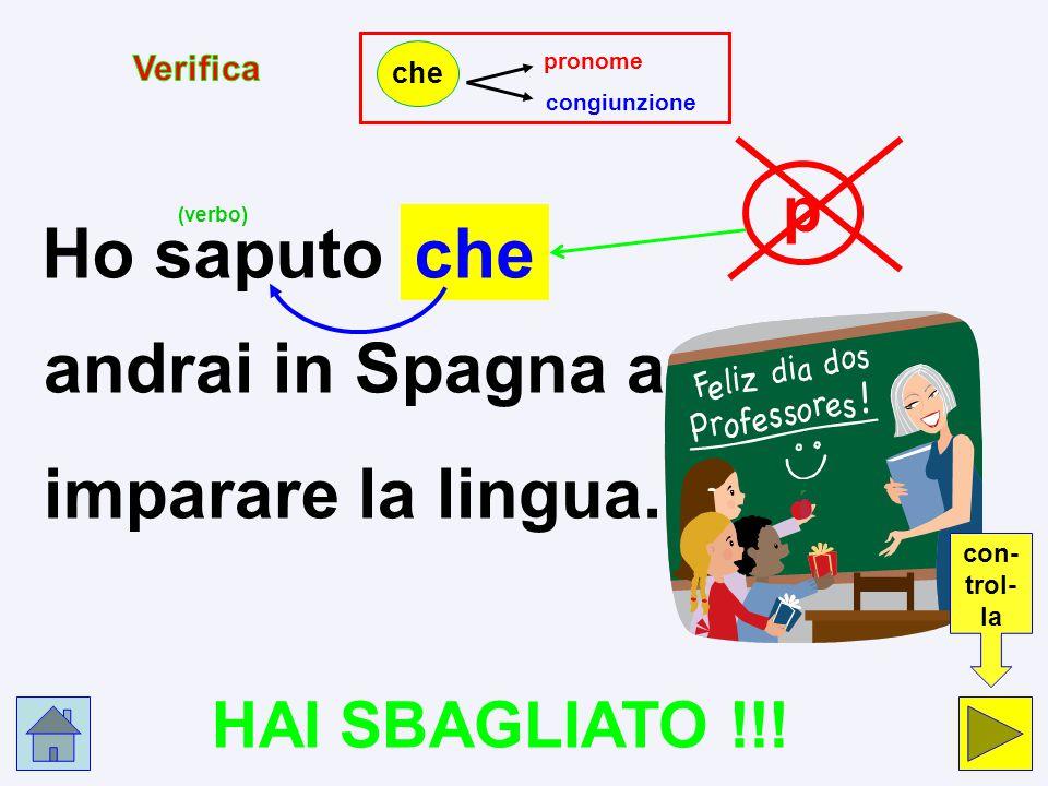 Ho saputo che andrai in Spagna a imparare la lingua. p