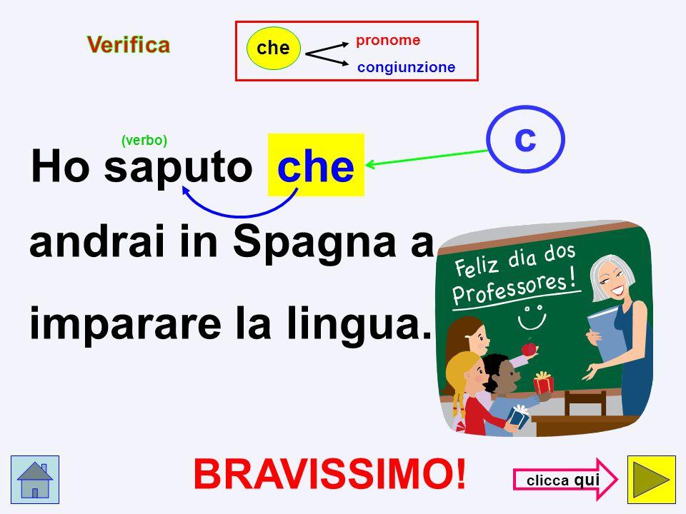 Ho saputo che andrai in Spagna a imparare la lingua. c BRAVISSIMO!
