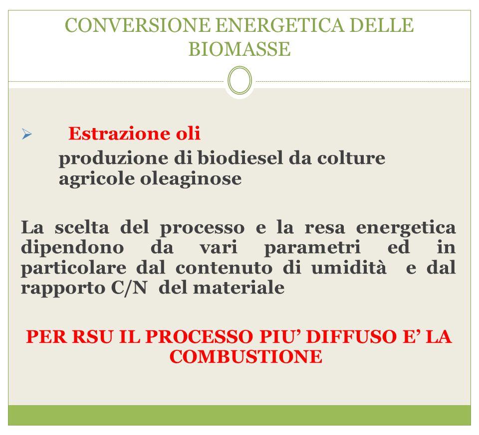 CONVERSIONE ENERGETICA DELLE BIOMASSE