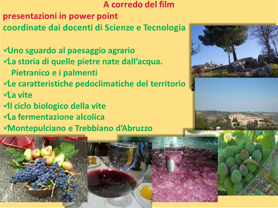 presentazioni in power point