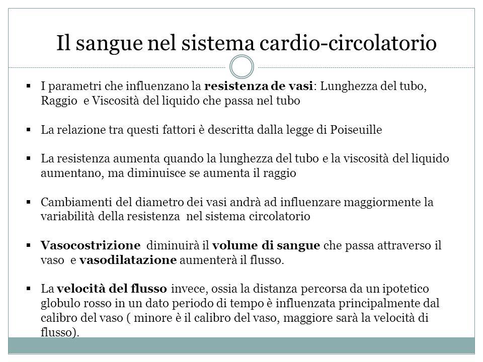 Il sangue nel sistema cardio-circolatorio