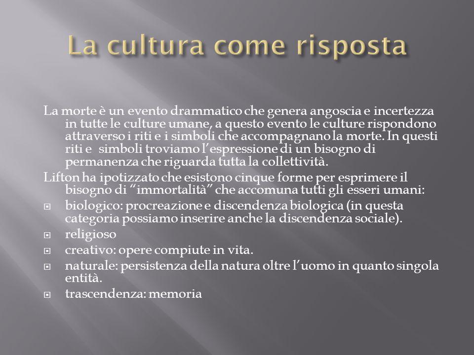 La cultura come risposta