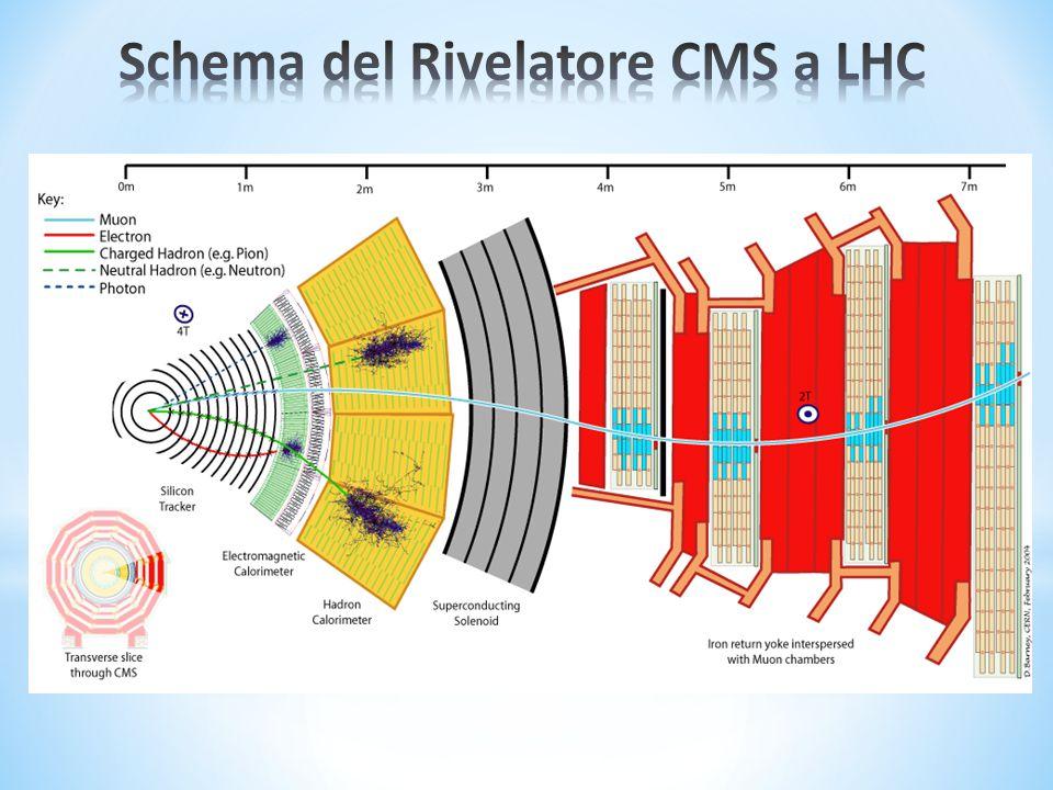Schema del Rivelatore CMS a LHC