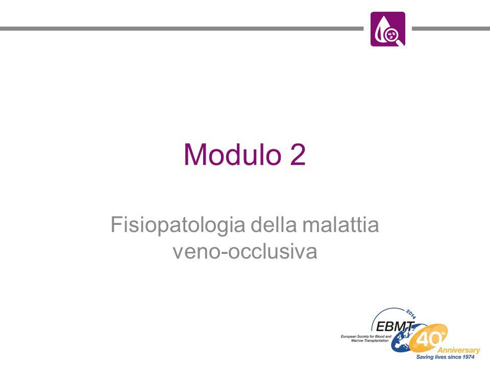 Fisiopatologia della malattia veno-occlusiva