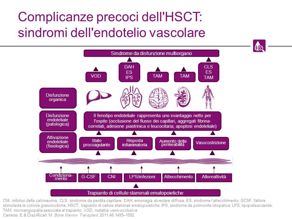 Complicanze precoci dell HSCT: sindromi dell endotelio vascolare