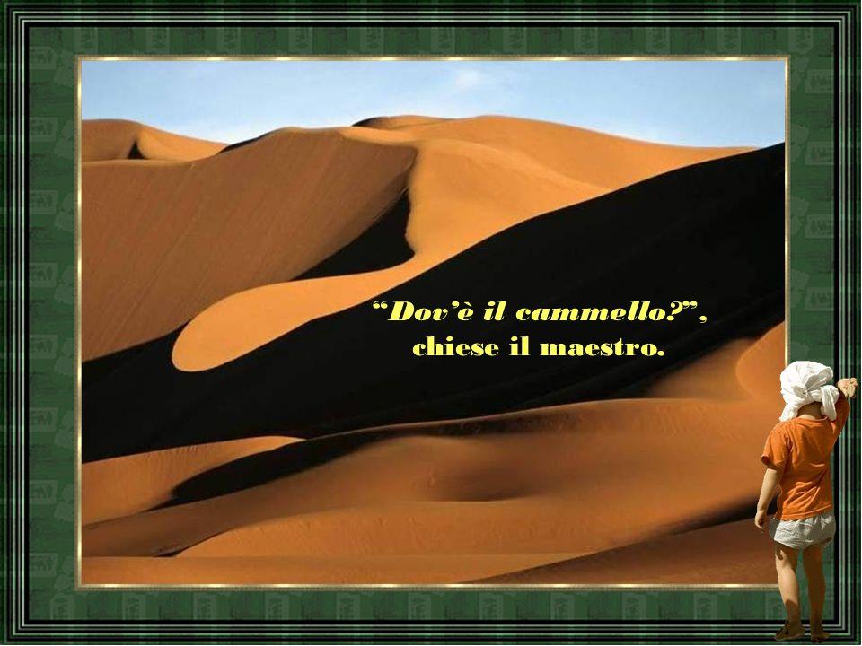 Dov'è il cammello , chiese il maestro.