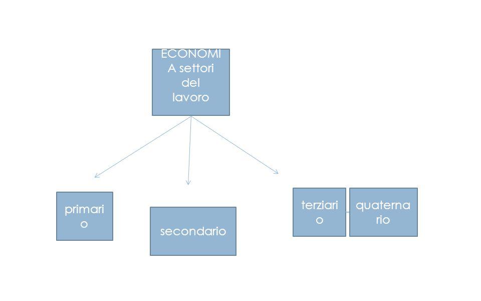 ECONOMIA settori del lavoro terziario quaternario primario secondario