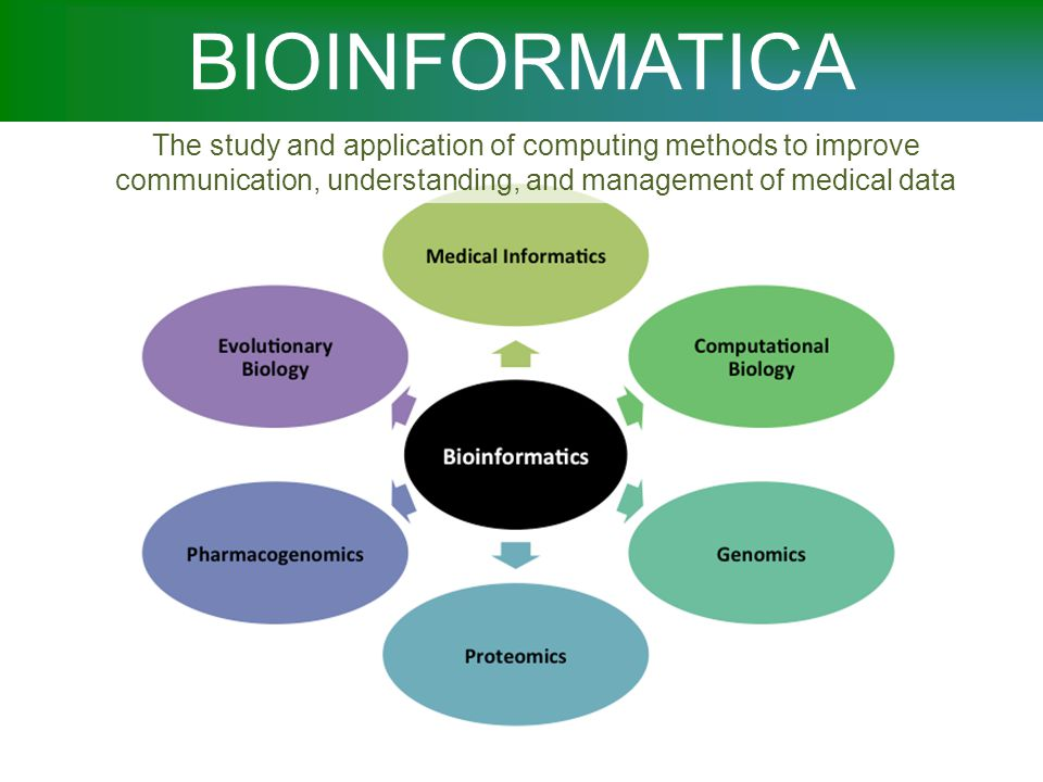 BIOINFORMATICA The study and application of computing methods to improve communication, understanding, and management of medical data.
