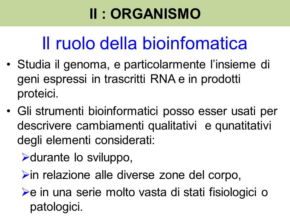 Il ruolo della bioinfomatica