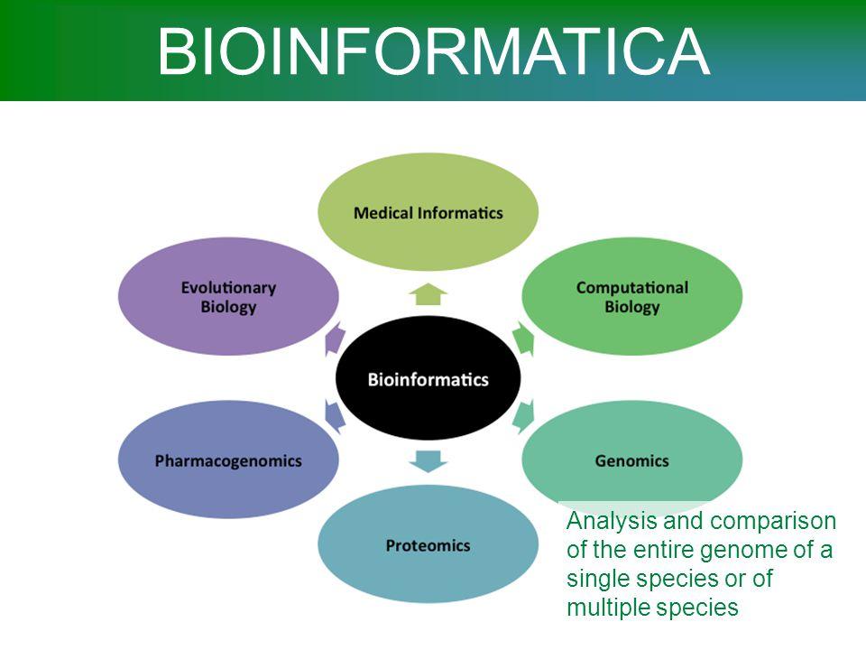 BIOINFORMATICA Computational and Statistical Genetics.