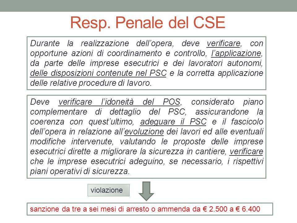 Resp. Penale del CSE
