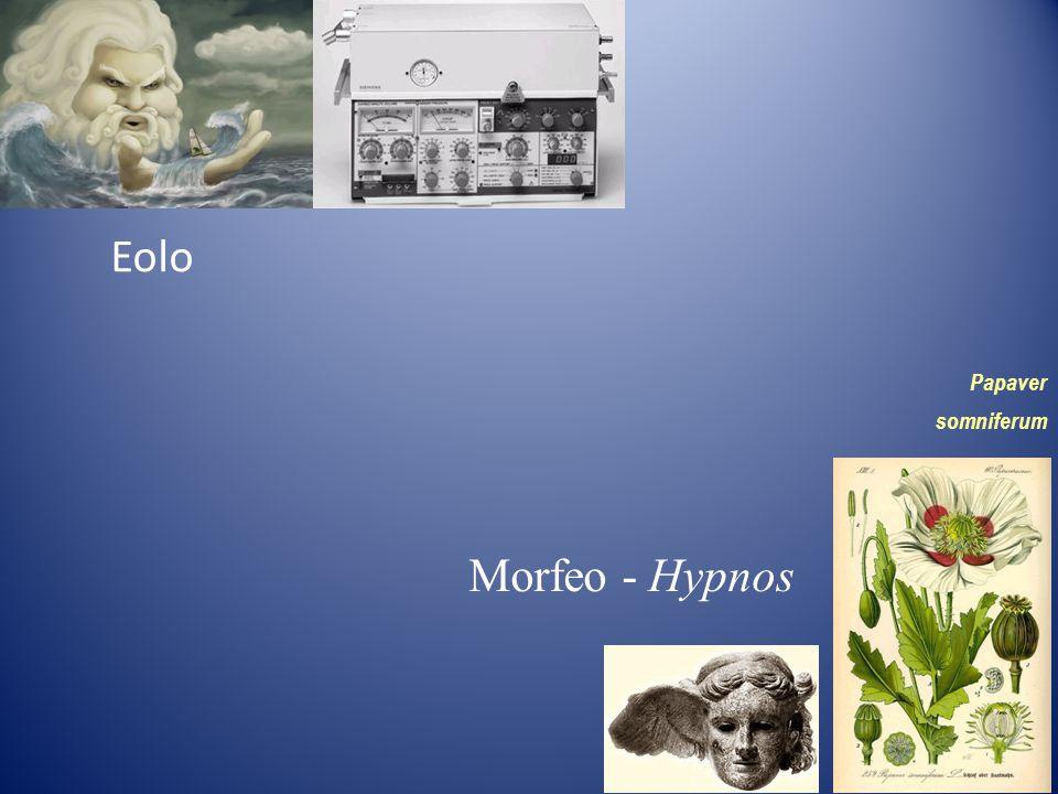 Eolo Papaver somniferum Morfeo - Hypnos