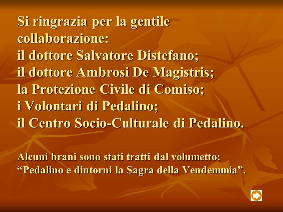 Si ringrazia per la gentile collaborazione: il dottore Salvatore Distefano; il dottore Ambrosi De Magistris; la Protezione Civile di Comiso; i Volontari di Pedalino; il Centro Socio-Culturale di Pedalino.
