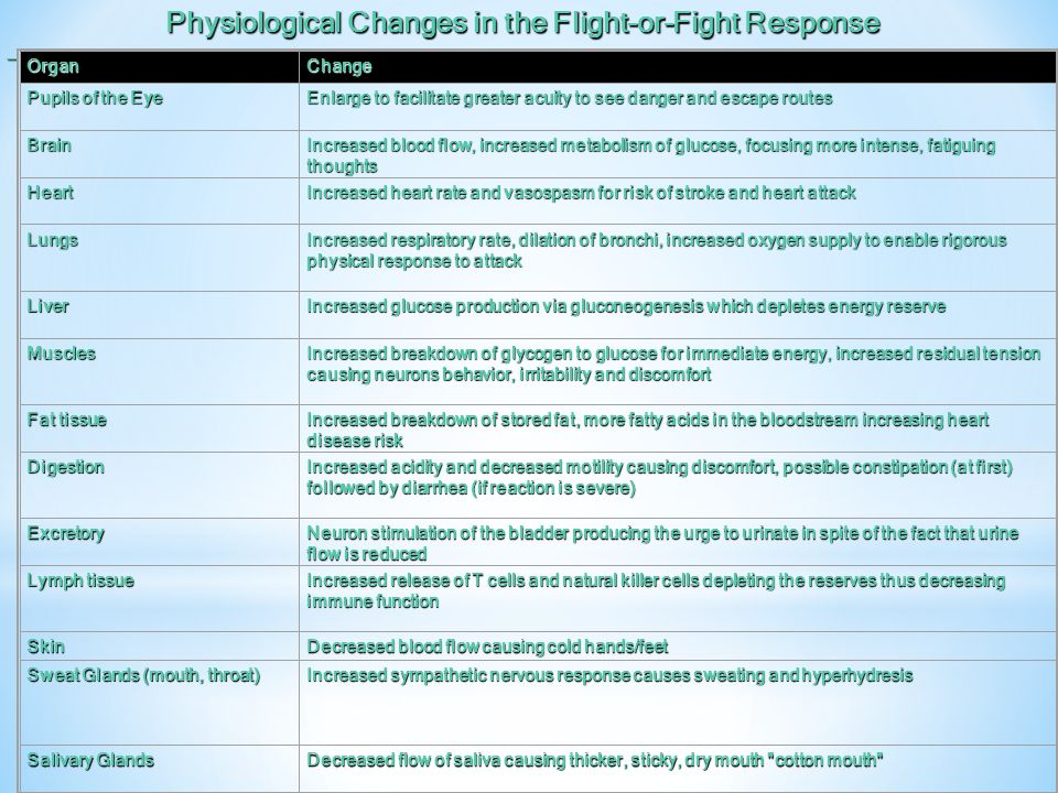Physiological Changes in the Flight-or-Fight Response
