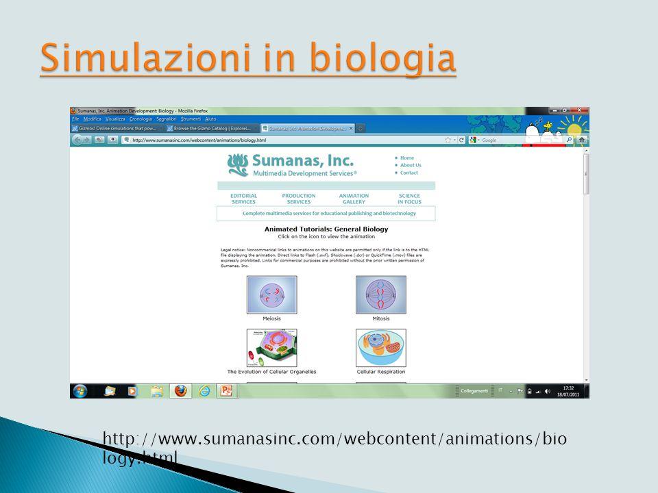 Simulazioni scientifiche a scuola (da F