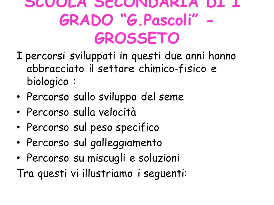 SCUOLA SECONDARIA DI I° GRADO G.Pascoli - GROSSETO