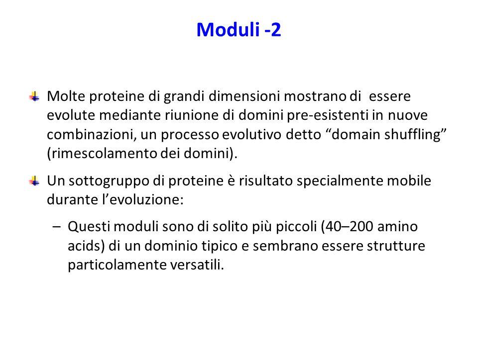 Moduli -2