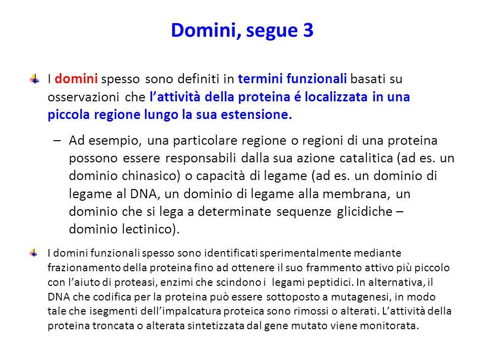 Domini, segue 3