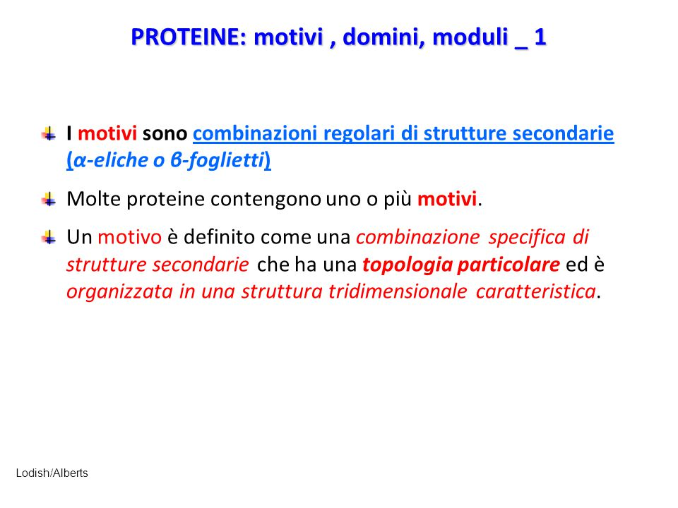 PROTEINE: motivi , domini, moduli _ 1