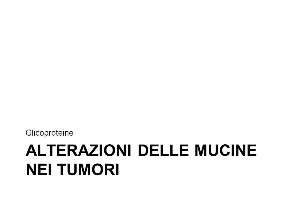 Alterazioni delle mucine nei tumori