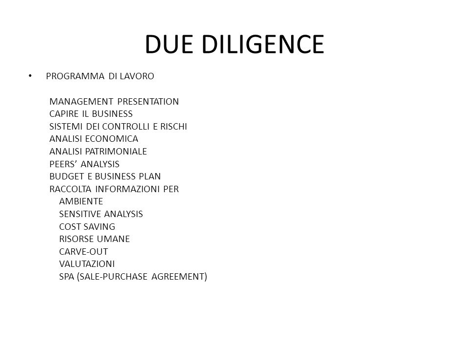 DUE DILIGENCE PROGRAMMA DI LAVORO MANAGEMENT PRESENTATION