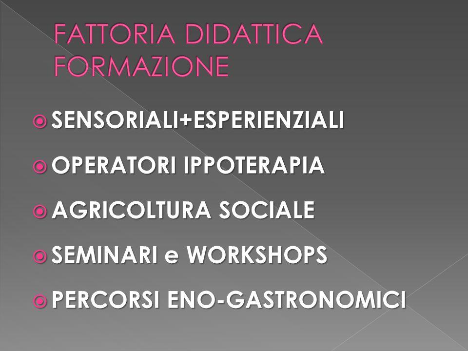 FATTORIA DIDATTICA FORMAZIONE