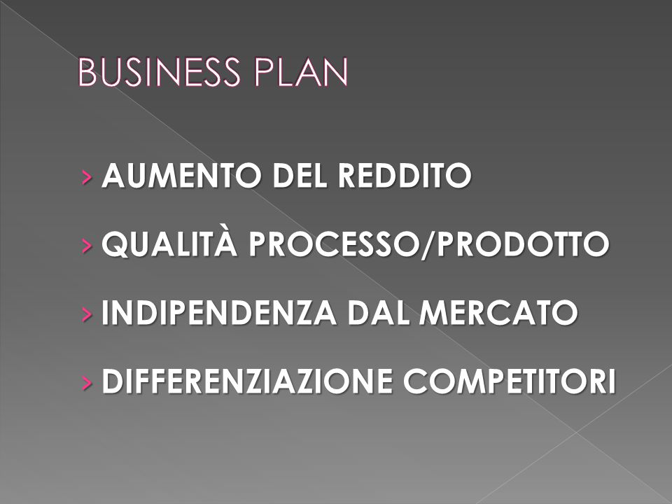 BUSINESS PLAN AUMENTO DEL REDDITO QUALITÀ PROCESSO/PRODOTTO