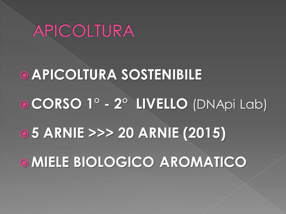 APICOLTURA APICOLTURA SOSTENIBILE CORSO 1° - 2° LIVELLO (DNApi Lab)