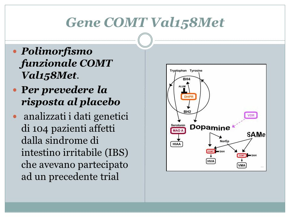 Gene COMT Val158Met Polimorfismo funzionale COMT Val158Met.